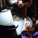 Hot chestnuts in Vienna